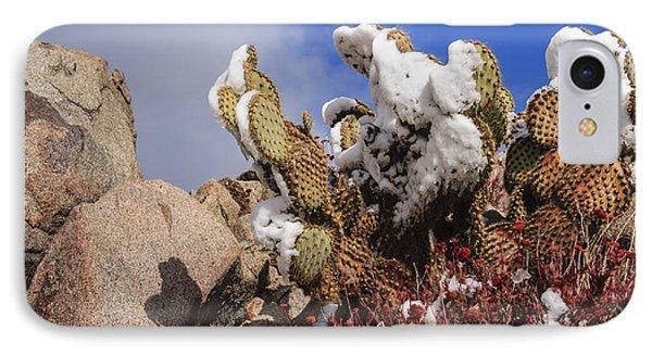 High Desert Snow 1 IPhone Case by Scott Campbell