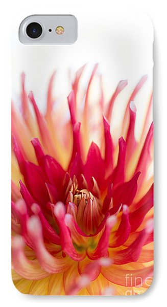 High Key Beauty Phone Case by Beve Brown-Clark Photography