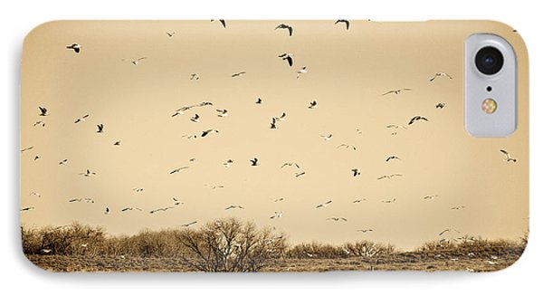 High Plains Seagulls IPhone Case by Marilyn Hunt