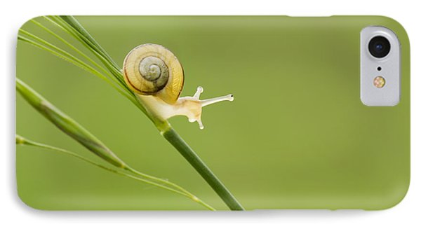 High Speed Snail IPhone Case by Mircea Costina Photography