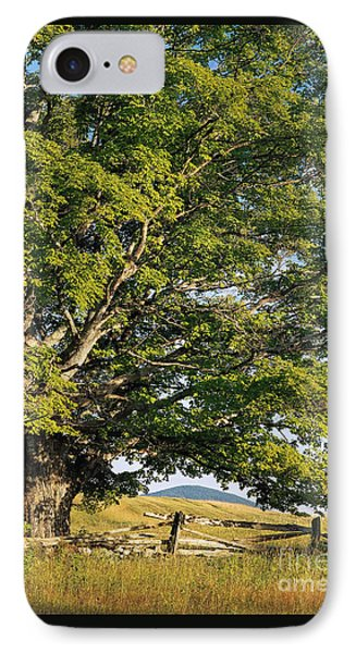 IPhone Case featuring the photograph High Summer by Alan L Graham