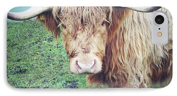 Highland Cow Phone Case by Les Cunliffe