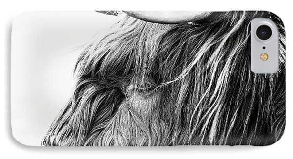 Highland Cow Mono IPhone Case by John Farnan