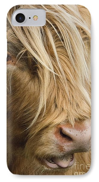 Highland Cow Portrait IPhone Case by Chris Thaxter