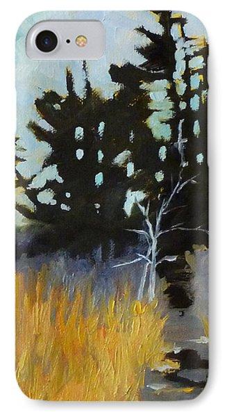 Hiking The Winter Trail IPhone Case by Nancy Merkle