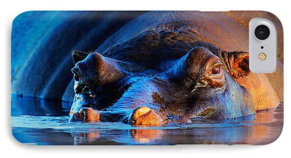 Hippopotamus  At Sunset Phone Case by Johan Swanepoel