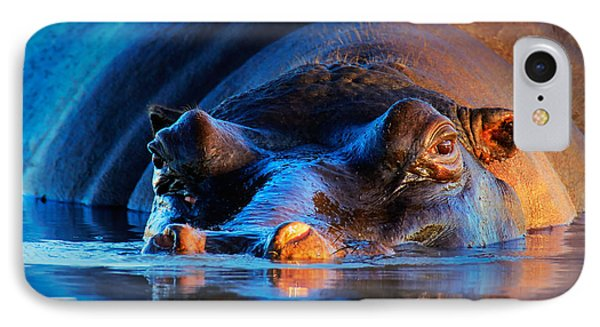 Hippopotamus  At Sunset IPhone Case by Johan Swanepoel