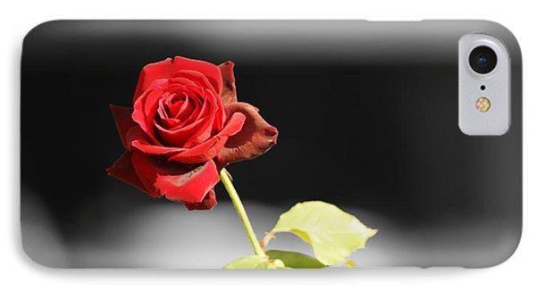 Hiroshima Rose IPhone Case by Cassandra Buckley