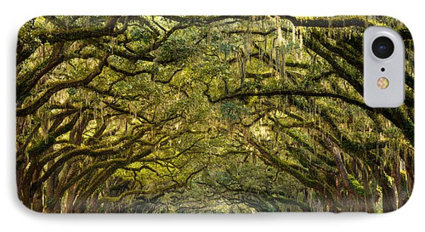 Historic Wormsloe Plantation Oak Trees IPhone Case