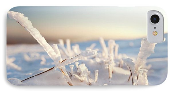 Hoare Frost On Grass IPhone Case by Ashley Cooper
