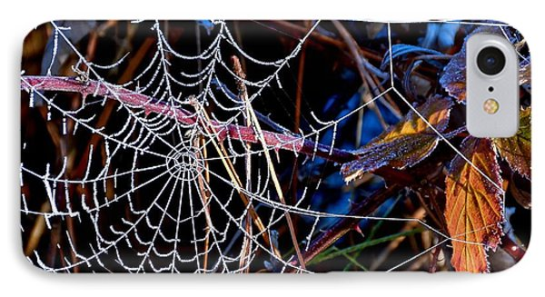 IPhone Case featuring the photograph Hoary Web by Julia Hassett