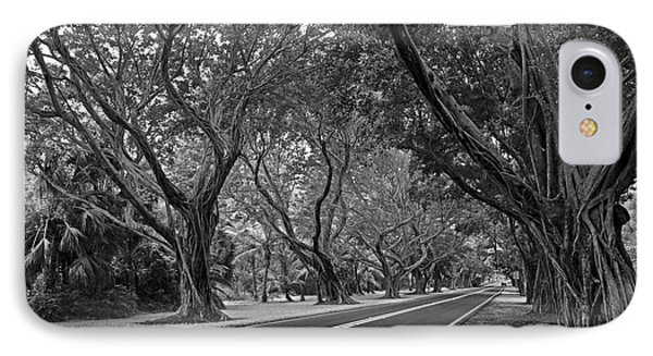 Hobe Sound Bridge Rd. West II Phone Case by Larry Nieland
