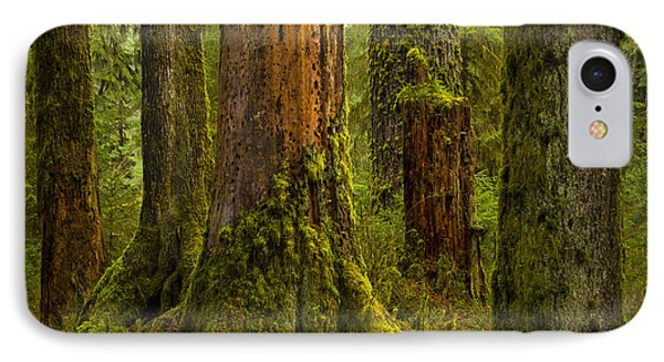Hoh Rainforest 1 IPhone Case