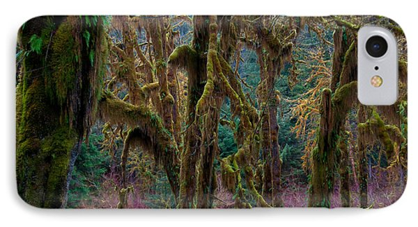 Hoh Rainforest, Olympic National Park Phone Case by Mark Newman