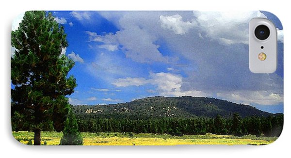 Holcomb Valley IPhone Case by Timothy Bulone