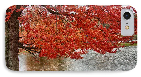 IPhone Case featuring the photograph Holding Our Bright Red Joy by Jeff Folger