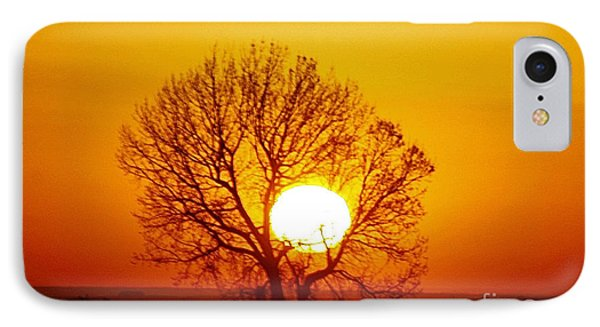 Holding The Sun IPhone Case by Steven Reed