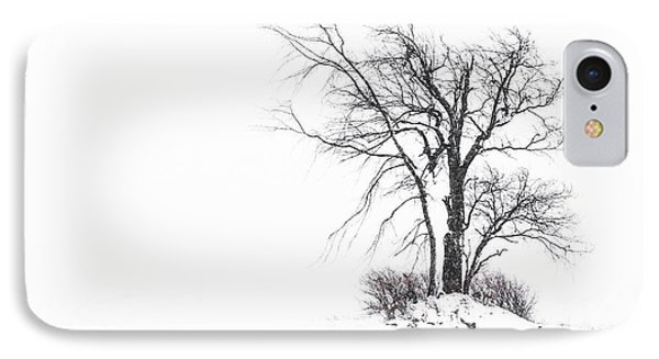 Holland Glenwood Tree IPhone Case by Don Nieman