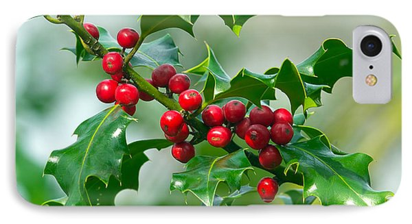 Holly Berries Phone Case by Sharon Talson