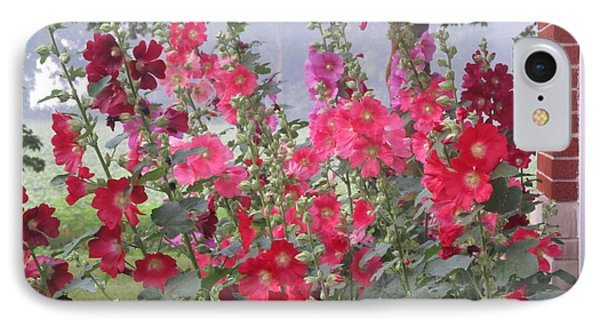 Hollyhocks Mix IPhone Case by Tina M Wenger