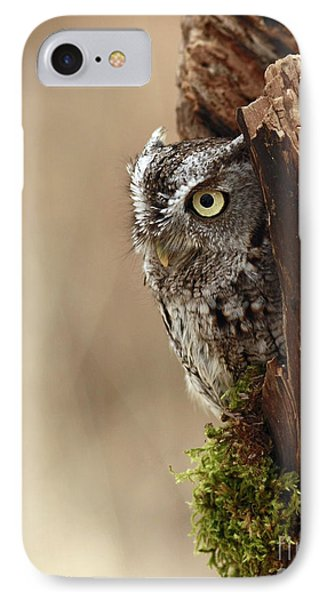 Home Sweet Home - Eastern Screech Owl In A Hollow Tree Phone Case by Inspired Nature Photography Fine Art Photography