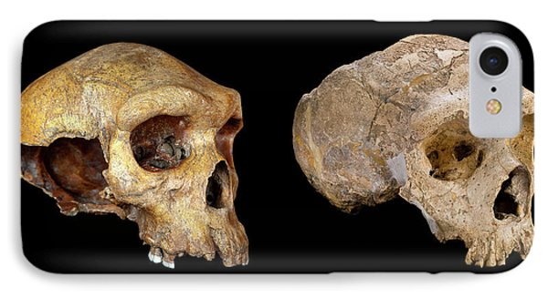 Homo Neanderthalensis Crania IPhone Case by Natural History Museum, London