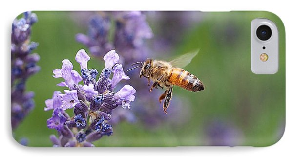 Honey Bee And Lavender Phone Case by Rona Black