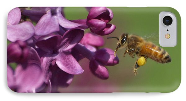 Honey Bee And Lilac IPhone Case by James Peterson