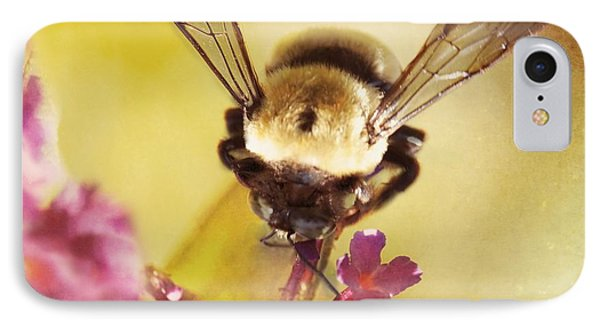 Honey Bee IPhone Case by Kim Fearheiley