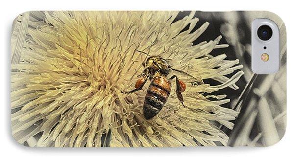 Honeybee iPhone 7 Case - Honey Bee Meets Dandy Lion by Susan Capuano