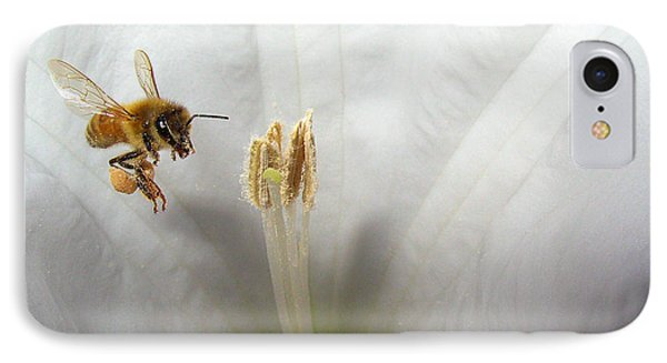 Honey Bee Up Close And Personal IPhone Case by Joyce Dickens