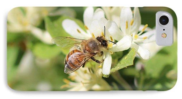 Honeybee And Honeysuckle IPhone Case by Lucinda VanVleck