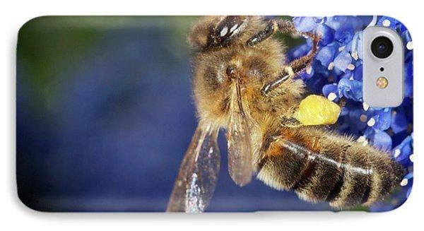 Honeybee iPhone 7 Case - Honeybee Collecting Pollen by Sinclair Stammers