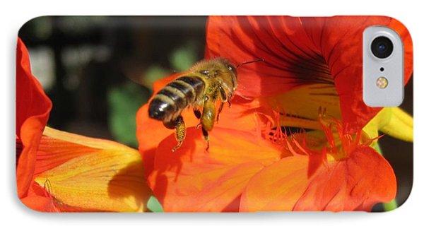 Honeybee Entering Nasturtium IPhone Case by Lucinda VanVleck