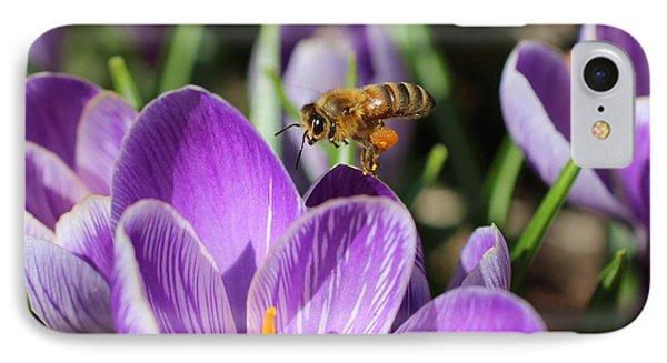 Honeybee Flying Over Crocus IPhone Case by Lucinda VanVleck