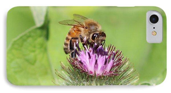 Honeybee On Burdock IPhone Case by Lucinda VanVleck