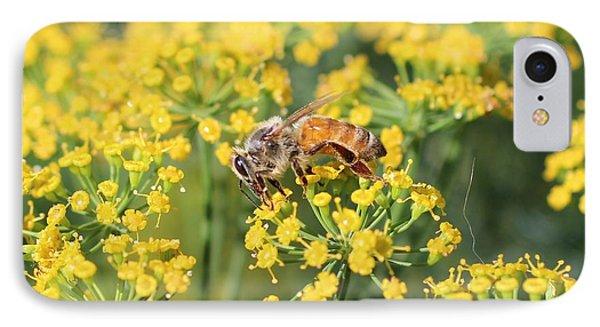 Honeybee On Dill IPhone Case by Lucinda VanVleck