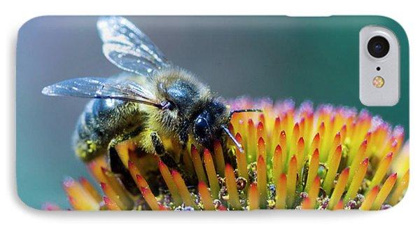Honeybee iPhone 7 Case - Honeybee On Flower by Louise Murray/science Photo Library