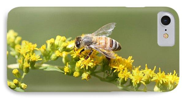 Honeybee On Goldenrod Twig IPhone Case by Lucinda VanVleck