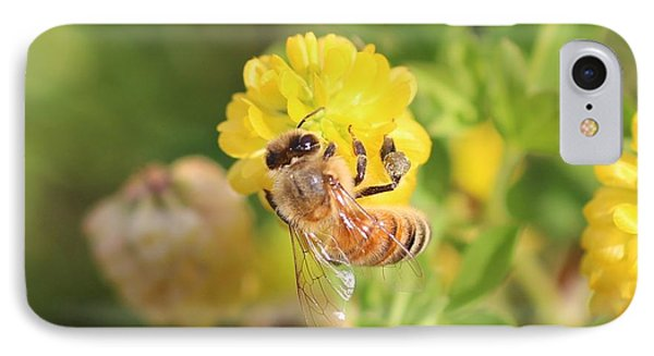 Honeybee On Hop Clover IPhone Case by Lucinda VanVleck