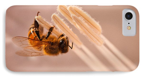 IPhone Case featuring the photograph Honeybee On Jimson by Janis Knight