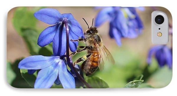 Honeybee On Siberian Squill IPhone Case by Lucinda VanVleck