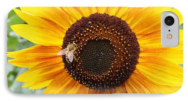 Honeybee On Small Sunflower IPhone Case by Lucinda VanVleck