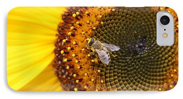 Honeybee On Sunflower IPhone Case by Lucinda VanVleck