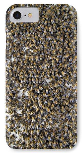 Honeybee iPhone 7 Case - Honeybee Swarm by Simon Fraser/science Photo Library
