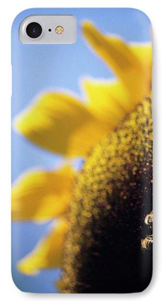 Honeybee iPhone 7 Case - Honeybees Pollinating A Sunflower by David Nunuk/science Photo Library