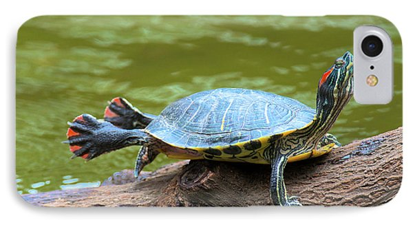 Hong Kong, A Painted Turtle Stretches IPhone Case by Richard Wright