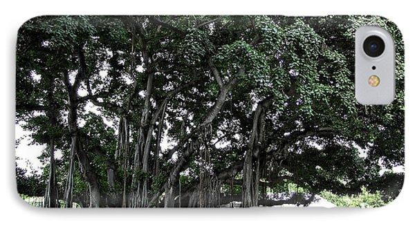 Honolulu Banyan Tree Phone Case by Daniel Hagerman