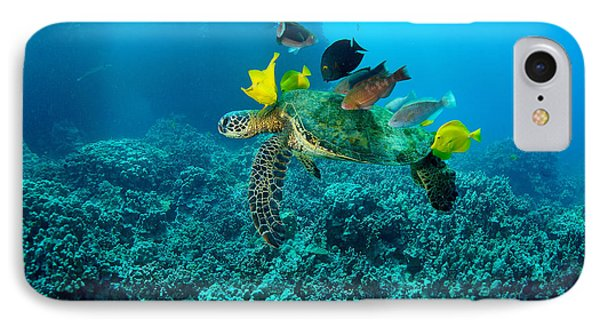 Honu Cleaning Station IPhone Case by Aaron Whittemore