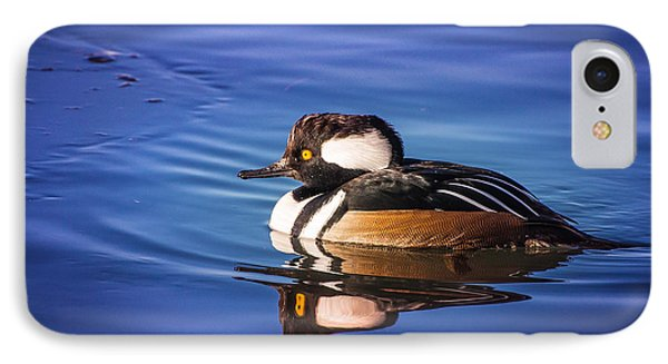 Hooded Merganser IPhone Case by Janis Knight